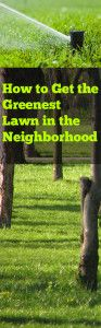 Tips+and+Tricks+for+Getting+the+Greenest+Lawn+in+the+Neighborhood