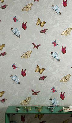 Farfalla wallpaper....beautiful butterflies, perfect to wallpaper a little girls room.