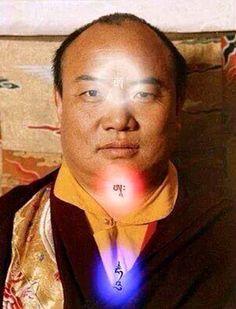 The 16th Gyalwa Karmapa Rangjung Rigpe Dorje (1924 - 1981)