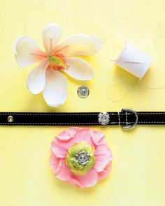 Add snaps to silk flowers or other decorations to put on your dog's collar for different occasions...