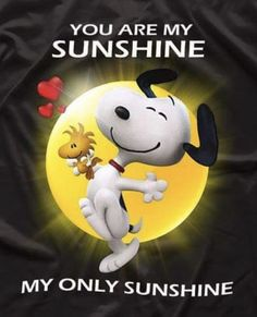 You are my Sunshine sayings for kids Snoopy Images, Snoopy Pictures, Charlie Brown Quotes, Charlie Brown And Snoopy, Peanuts Cartoon, Peanuts Snoopy, Garfield Cartoon, Snoopy Wallpaper, Snoopy Quotes