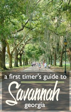 A First-timer's Guide to Savannah, Georgia: Where to Visit, Eat, Shop, and Sleep