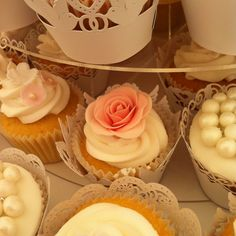 Vintage style cupcakes in wrappers