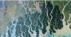 Four types of #river deltas and stunning patterns on our planets When rivers meet the ocean, coastlines tend to bend outward, forming a delta. These deltas when looked from space present multifarious patterns.