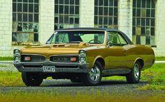 My Camaro 67 — theoldiebutgoodie: 1967 Pontiac GTO.