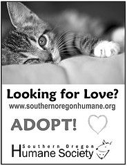looking for love? look no further  www.sohumane.org