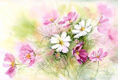 Cosmos by Rachel McNaughton @ Mini Gallery - Watercolour Painting Diy Bead Embroidery, Embroidery Kits, Oil Painting Pictures, Pictures To Paint, Art Floral, Watercolour Painting, Watercolor Flowers, Flower Prints, Flower Art