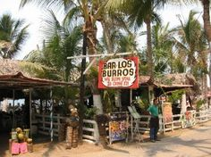 "You have not LIVED until you've sat at Los Burros Bar in Puerto Vallarta. A table facing the beach, live guitar in the background, the sound of the waves crashing in...and of course, a bucket of cold beer, a heaping plate of nachos and more more people selling ""mexican junk"" than you can shake a stick at! Paradise...ahhh"