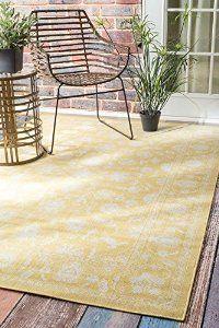 8x10  $230 outdoor rug