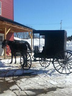 Amish ~ Northern Maine