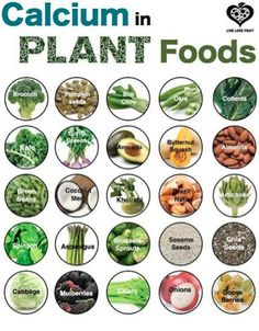 Calcium in plant food Visit my site http://youtu.be/w-eJkLbcOm4 #health #healthydiet #diet