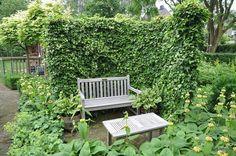 Jardin de Louise - Flip - Picasa Web Albums