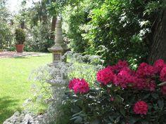 Lovely spring scene from the garden of Peter Skinner.