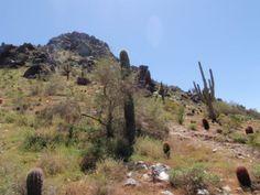 Cross Country Road Trip 2010, through the western USA. Arizona
