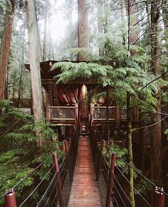 Capilano Suspension Bridge Park captured by @remybrand #interiors #interiordesign #architecture #decoration #interior #home #design #photogrid #bookofcabins #homedecor #decoration #decor #prefab #smallhomes #instagood #compactliving #fineinteriors #cabin #tagsforlikes #tinyhomes #tinyhouse #like4like #FABprefab #tinyhousemovement #likeforlike #houseboat #tinyhouzz #container #containerhouse by bookofcabins