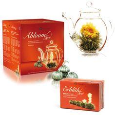 104 Meilleures Images Du Tableau Fleurs De The Flower Tea Flowers
