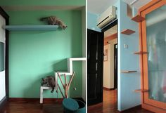 DIY cat climber from shelves cat-habitat