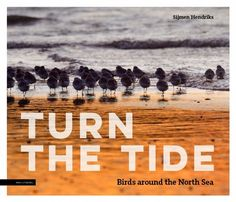 TURN THE TIDE North Sea, Photoshop, Movies, Movie Posters, Films, Film Poster, Cinema, Movie, Film