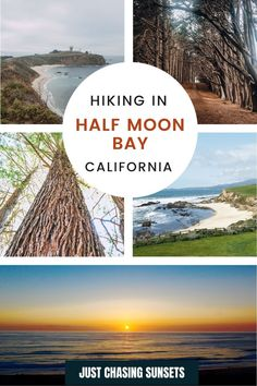 Half Moon Bay California offers amazing hikes along the coast and into Redwood forests! This guide shares the best hikes, with awesome views, in Half Moon Bay, CA California Travel Guide, California Destinations, Beautiful Places To Visit, Cool Places To Visit, Cypress Tree Tunnel, Half Moon Bay California, Travel For A Year, Moss Beach, Redwood Forest