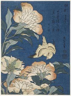 Katsushika Hokusai | Canari et pivoines | Images d'Art
