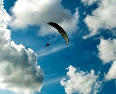 Parasailing....high n the sky w/o a care n the world......