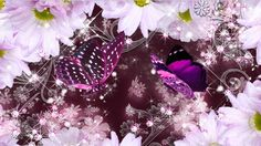Background Screensavers, Hd Desktop, Hd Wallpaper, Amethyst, Texture, Floral Backgrounds, Crystals, Flowers, Crafts
