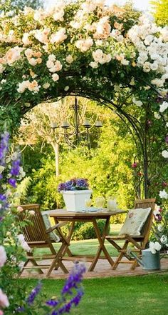 Lovely patio arbor featuring Iceberg climbing roses in Provence, France • photo via Kelly Roberson on BHG