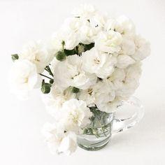 B L O O M [ ] [ ] [ ] #bloom #flowers #whiteflowers #ethicalfashion #ecofashion #consciousfashion #veganfashion #greenfashion #sustainablefashion #slowfashion #fashionrevolution  #organic  #organiccotton  #ecofriendly #animalfriendly #humanfriendly #minimalism  #minimalstyle  #simplicity #basic #zerowaste #monochrome #whitegram  #shopindependent #creativebusiness  #onthetable #flatlay #closeup