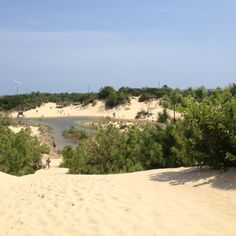 Jockeys Ridge State Park-Nags Head North Carolina.  Awesome sand dunes!
