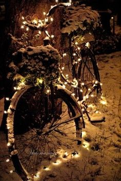 ``deck out an old bicycle with christmas lights `` hopefully there will be snow