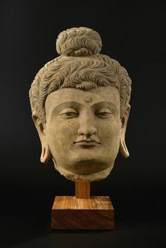 Importante tête de Bouddha en stuc, Gandhara, IIIe - IVe s., h. 43 cm