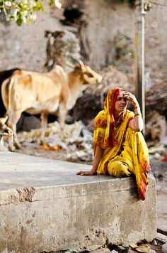 Waiting with Cows, India by B.Bubble on Flickr.