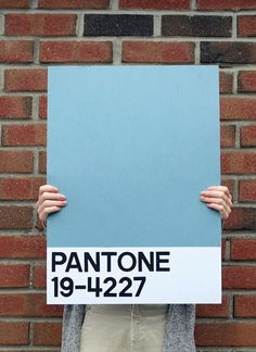 Large DIY wall art projects for really, really cheap. I love this Pantone canvas.