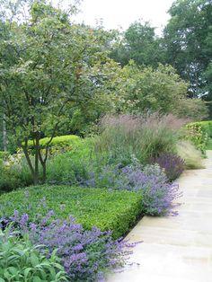 Low square hedge, Wilson McWilliam Studio