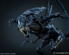 Filename: alien windows wallpaper Resolution: File size: 1510 kB Uploaded: Edit Stevenson Date: Les Aliens, Aliens Movie, Xenomorph, Creature Feature, Creature Design, Neca Alien Queen, Alien Movie Series, Giger Alien, Hr Giger