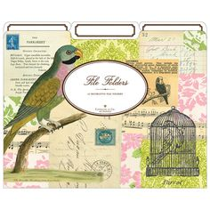 File Folders, how pretty. I love pretty things in my office, since I spend so much time in there. Cool Stationery, Collage, Fine Paper, Parakeet, My Books, Vintage World Maps, Arts And Crafts, File Folders, My Favorite Things