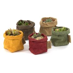 The bags are made using traditional artisan methods from cultivated and sustainable cellulose fiber. Large Indoor Plants, Large Planters, Planter Pots, Tree Base, Paper Table, Plastic Trays, Herb Pots, Wash N Dry, Mild Soap