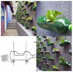 recycle vertical small space garden