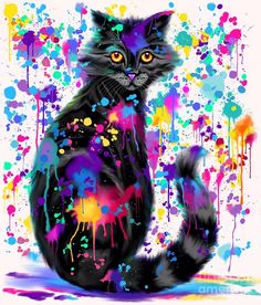 Paint With Colorful Cat Digital Art by Nick Gustafson