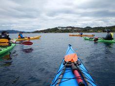 sea kayaking week Kayaking Trips, Sea, Island, Explore, Block Island, Ocean, Islands, The Ocean
