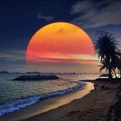 This is our Amazing World. Safe this world for our children. Happy Solstice, Good Night Wishes, Mermaids And Mermen, Turquoise Water, Color Of Life, Winter Holidays, Beautiful Beaches, Beautiful Landscapes, Beautiful World