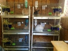 I waited months to put together a rack to hold rabbit cages and dropping pans stacked one on top of the other. If you've ever looked at rabbit cages (not the small pet cages), you would know that t...