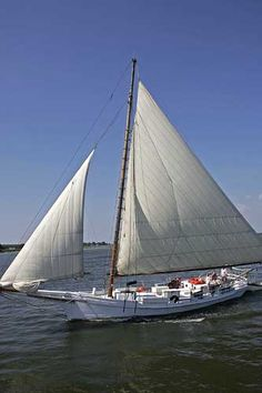Originating in the skipjacks are the last working boats under sail in the United States (fleets of skipjacks used to dredge oysters from the floor of the Chesapeake Bay in winter). The skipjack was designated the official state boat of Maryland in