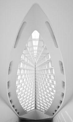 futuristic architecture, santiago calatrava, future architecture, modern building, white interior by FuturisticNews.com
