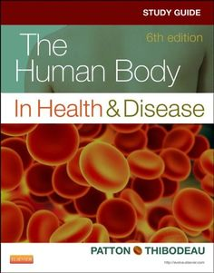 cool Study Guide for The Human Body in Health & Disease