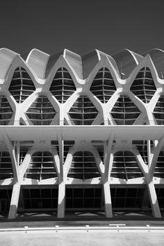 calatrava, valencia, by Taco Dietvorst