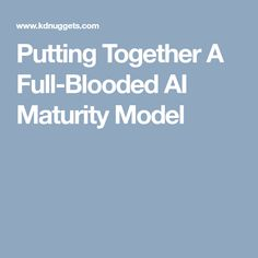 Putting Together A Full-Blooded AI Maturity Model