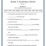 Grade 3 Vocabulary Words and Worksheets. These worksheets help in better understanding of English words. Sentences help in knowing how the words are used. 3rd Grade Math Worksheets, Vocabulary Worksheets, Vocabulary Words, Article Grammar, Wilson Reading, Adjective Worksheet, Teaching Phonics, English Words, Word Work