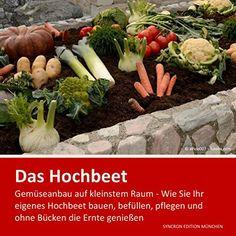 Hochbeet - Gemüseanbau auf kleinstem Raum: Alles Wissenswerte über Hochbeete . Wie Sie Ihr eigenes Hochbeet bauen, befüllen, pflegen und ohne Bücken die Ernte genießen von Christel Minnerup - Stanke, http://www.amazon.de/dp/B00NFJNRXK/ref=cm_sw_r_pi_dp_Xx57ub0EJ6JJX
