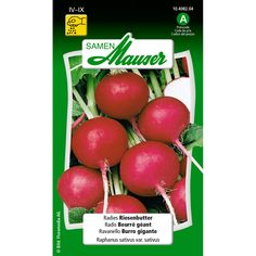 Radis beurre géant | Schilliger Herb Seeds, Seed Packets, Vegetables, Globes, Warm, Red, Products, Butter, Seeds